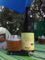 03 - Perennial Artisan Ales - Suburban Beverage : Gose is one my favorite style of beer. Specially on the beach. But when you brew it with key lime juice and have a malted body like this, it was like drinking a key lime pie !!! Very refreshing and tasty !!!